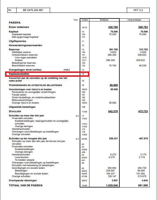 kapitaalsubsidies balans